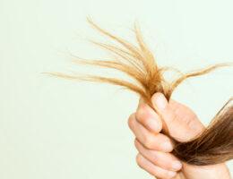 קצוות מפוצלים ושיער פגום